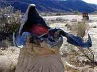 Монгольский Смертельный Червь