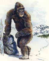 Снежный человек, неуловимое существо