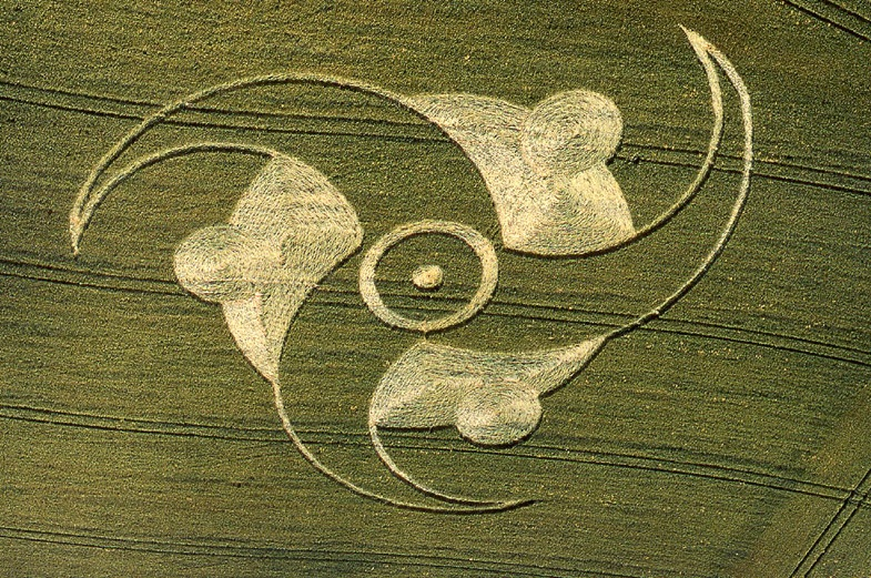 Пшеничные холсты