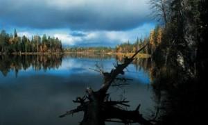 НЛО терроризируют деревню Ведлозеро