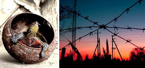 Монстры Чернобыля