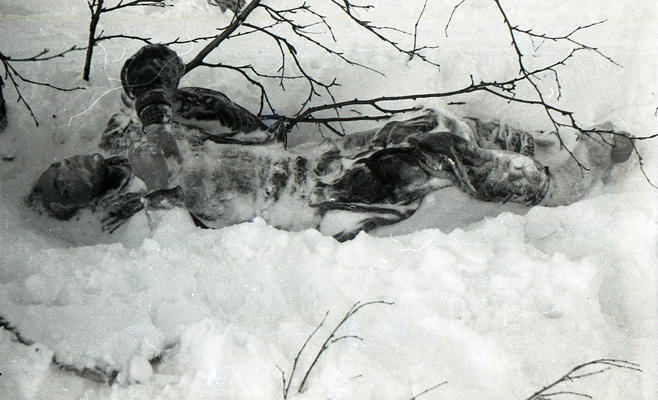 Перевал Дятлова: фото погибших