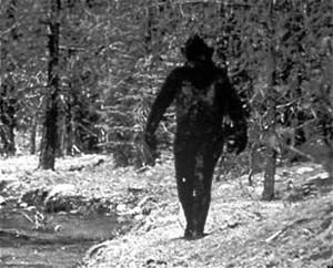 Снежный человек - фото очевидцев